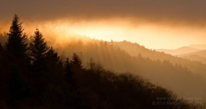 Oconaluftee Valley Sunbeams
