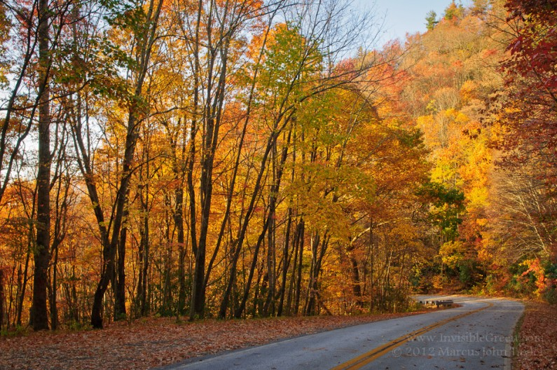 Brasstown Bald Autumn