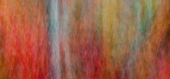 wpid8639-Autumn_Abstract_MMXIII-0012-960.jpg